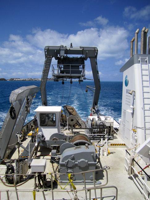 atlanticexplorer201204bats02
